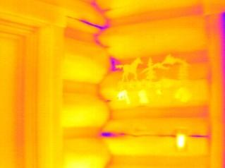 Log Home Thermal Image